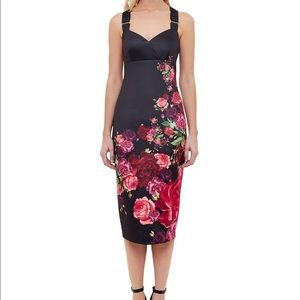 NWT Ted Baker Dress